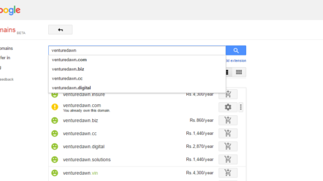 Google Domains charges in INR